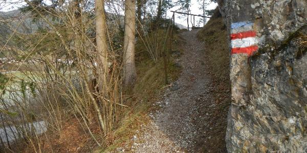 Wanderweg neben der ehemaligen Bahntrasse (Radweg)
