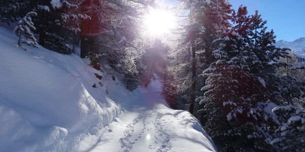 Snow-covered winter hiking trail just before Tufteren