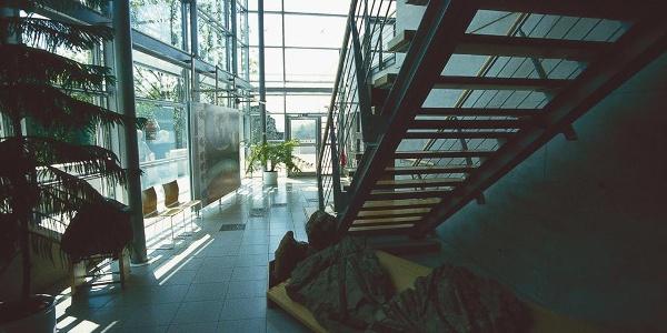 Urweltmuseum, Detailaufnahme