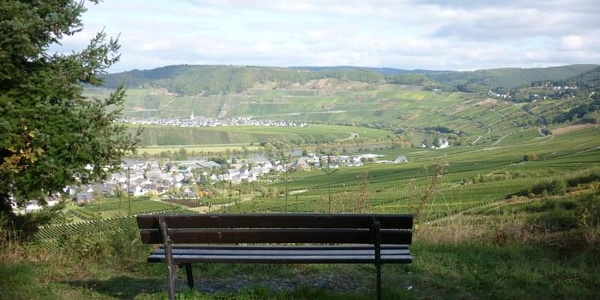 Looking from the vineyards across to Leiwen (in the foreground) and Trittenheim (in the background)