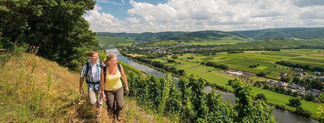 Auf dem Brauneberg mit Blick flußaufwärts Richtung Bernkastel