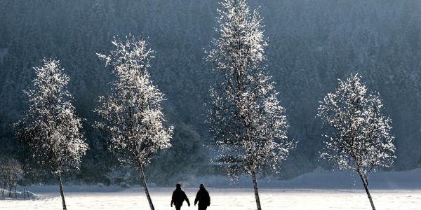 Winterwanderung Sonnenweg