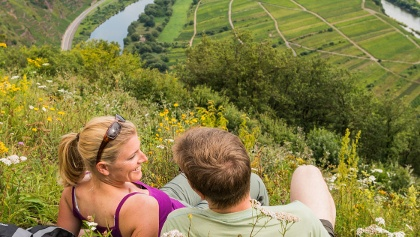 Blick vom Calmont Gipfelkreuz Richtung Ediger-Eller