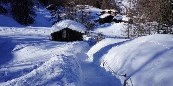 Auf dem Winterwanderweg kurz vor Furi