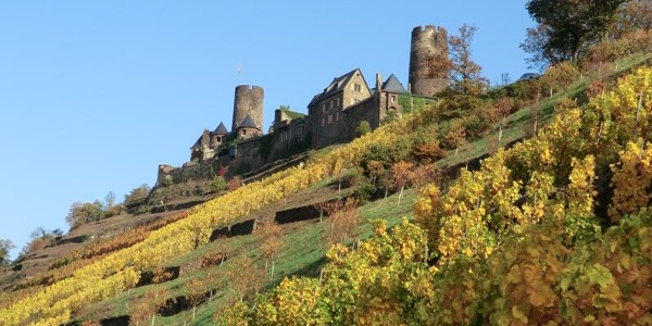 Burg Thurant oberhalb der Alkener Weinberge