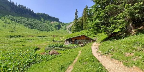Obere Walmendinger Alpe Sommer