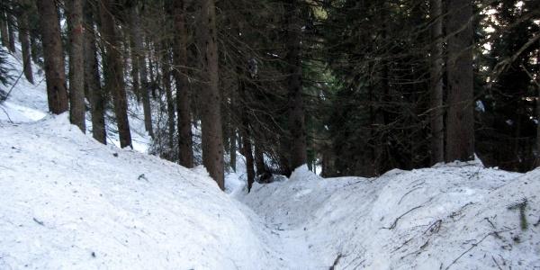 Auf diesem Hohlweg (identisch mit dem Sommerweg) geht es anfangs steil aufwärts.