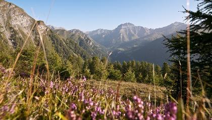 443: Fimberpass - Val d'Uina - Reschenpass: Etappe 1, Samnaun - Sent
